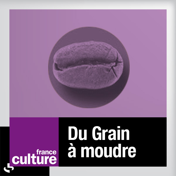 du-grain-a-moudre